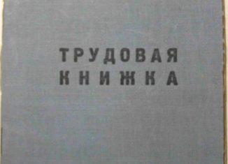 В России введут электронные трудовые книжки