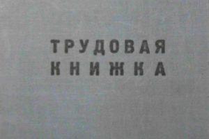 Россияне могут перейти на электронные трудовые книжки до конца года